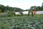 Normanby Hall Victorian Walled Garden, Scunthorpe, Lincolnshire
