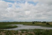 Wolla Bank Pit Nature Reserve, Chapel St Leonards, Lincolnshire