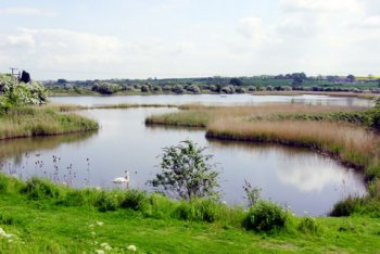 Far Ings National Nature Reserve, Barton-upon-Humber, Lincolnshire