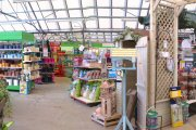 Downtown Garden Centre, Grantham, Lincolnshire