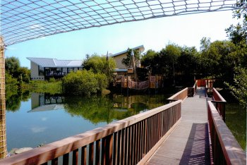The Natural World Centre, Whisby, Lincolnshire