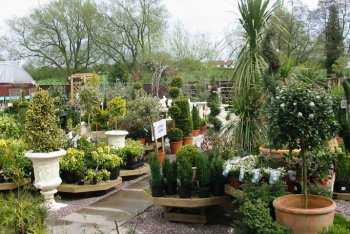 Pennells Garden Centre, Cleethorpes, Lincolnshire