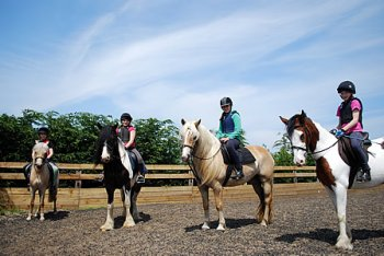 Black Cat Equestrian Centre, Mablethorpe, Lincolnshire