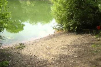 Starmers Pit Fishing, Lincoln, Lincolnshire