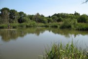 North View Lakes Fishery, Gedney, Lincolnshire