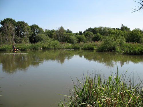 North View Lakes Fishery Gedney Lincolnshire