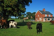 Bainvalley South Holiday Cottage, Horncastle, Lincolnshire