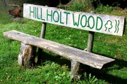 Hill Holt Wood, Norton Disney, Lincolnshire