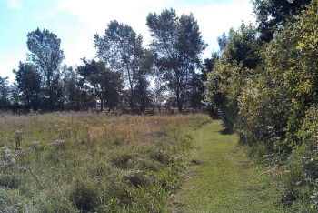 Axholme Line Nature Reserve, Haxey, Lincolnshire