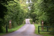 Bourne Woods, Bourne, Lincolnshire