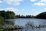 Hartsholme Country Park, Skellingthorpe, Lincolnshire