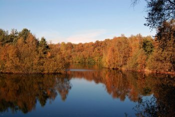 Swanholme Lakes Nature Reserve, Lincoln, Lincolnshire